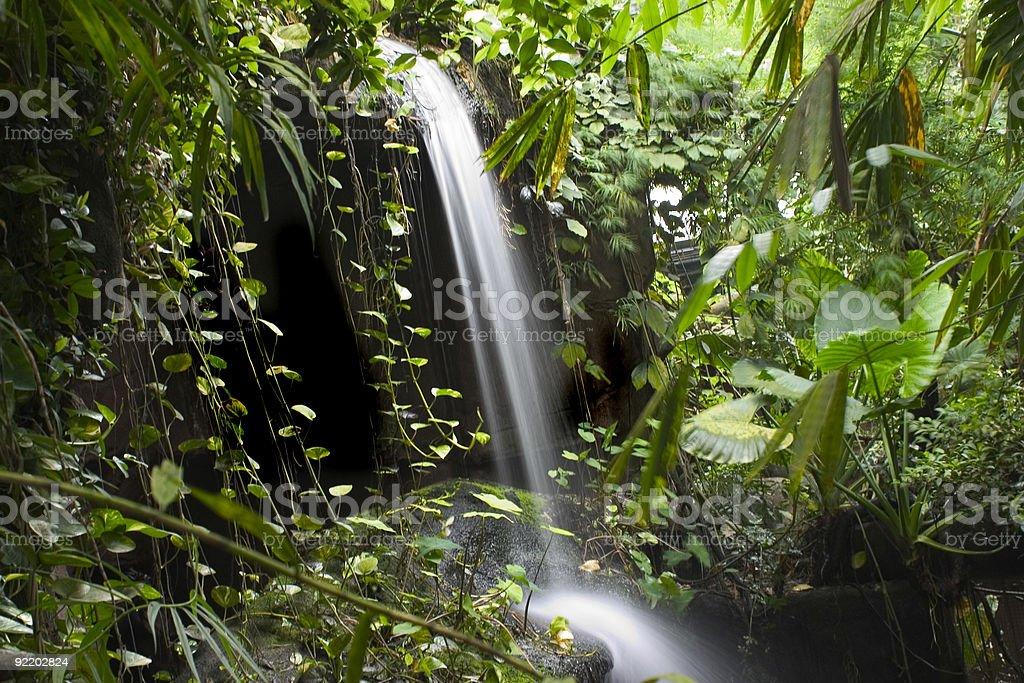 Rainforest Waterfall stock photo