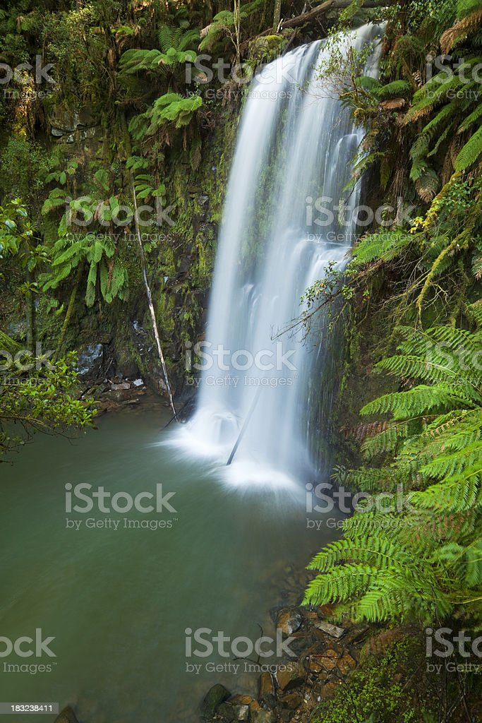 Rainforest waterfalls, Beauchamp Falls, Great Otway NP, Victoria, Australia stock photo