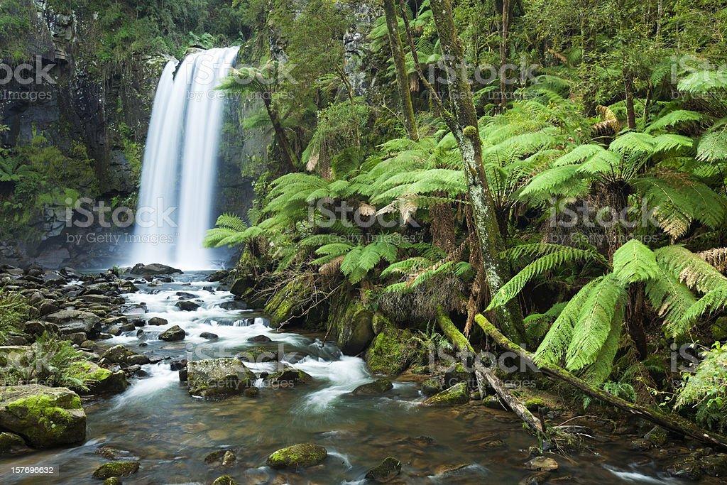 Rainforest waterfalls, Hopetoun Falls, Great Otway NP, Victoria, Australia stock photo