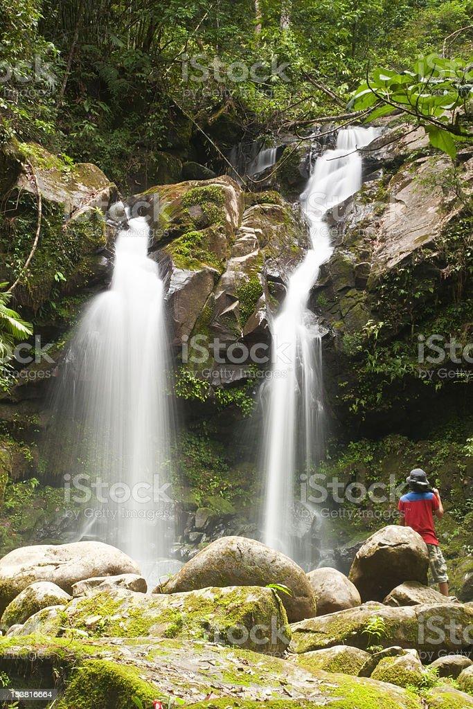 Las deszczowy Wodospady zbiór zdjęć royalty-free