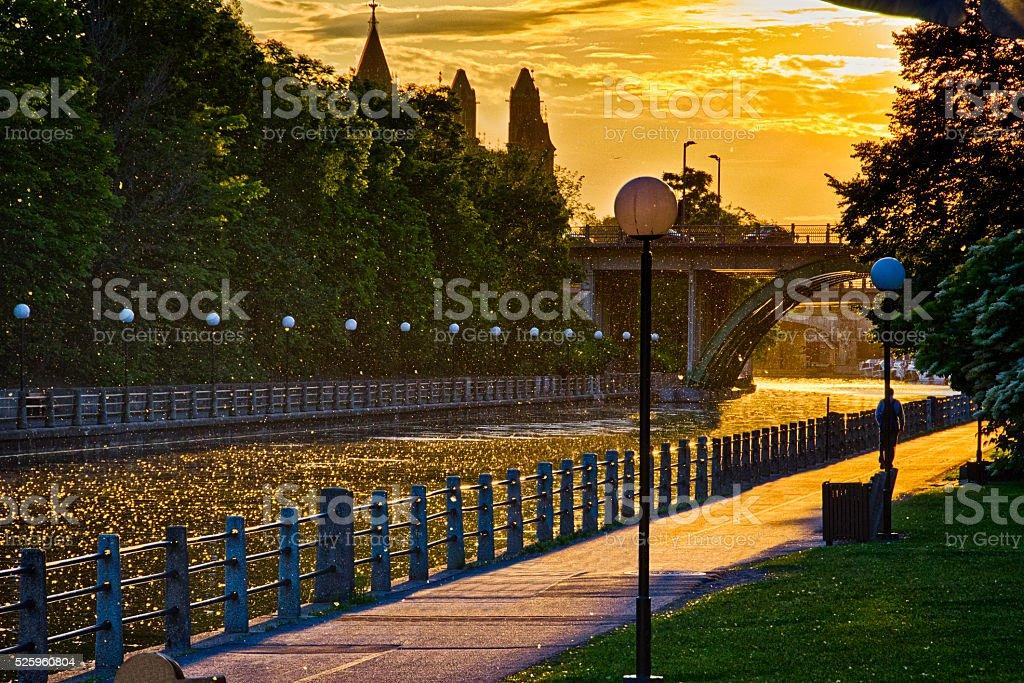 Raining Milkweed on the RIdeau Canal stock photo