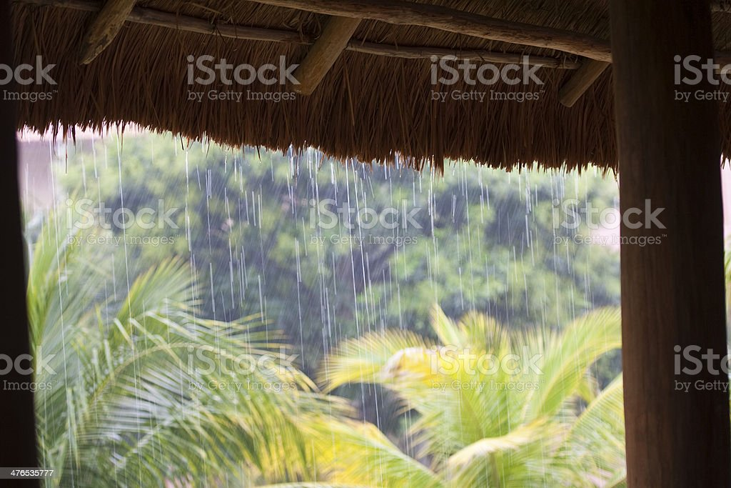 Raining royalty-free stock photo