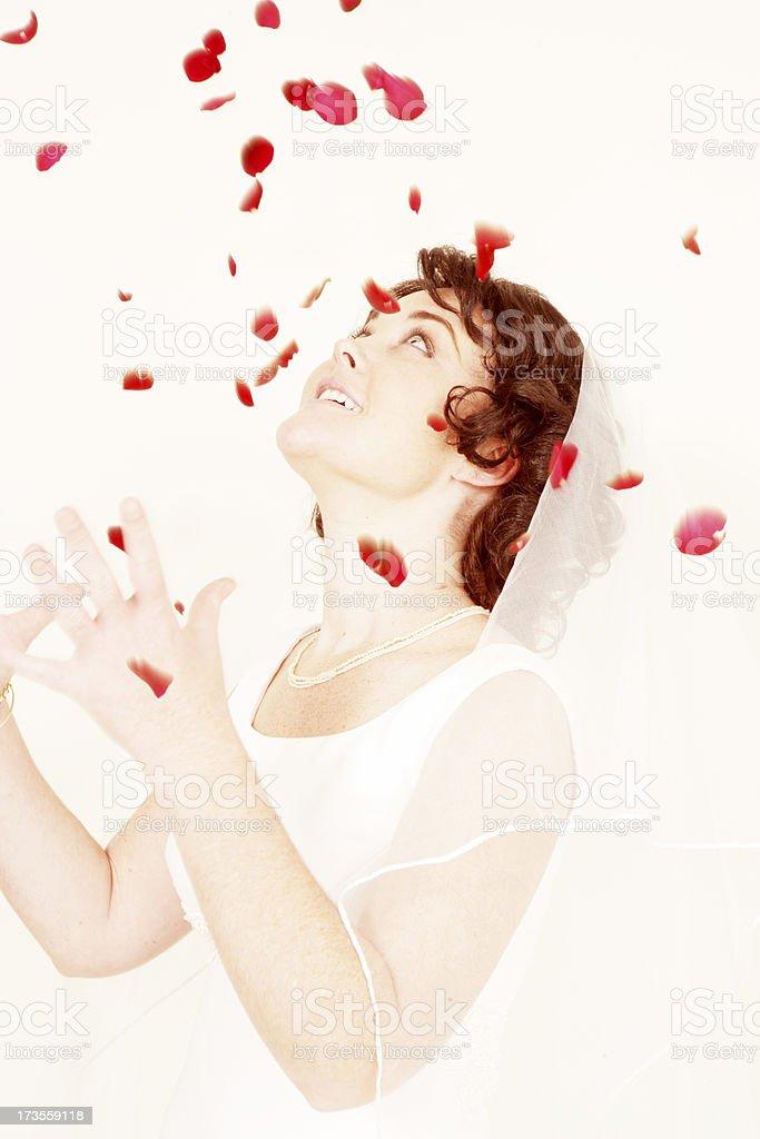 Raining Rose Petals royalty-free stock photo