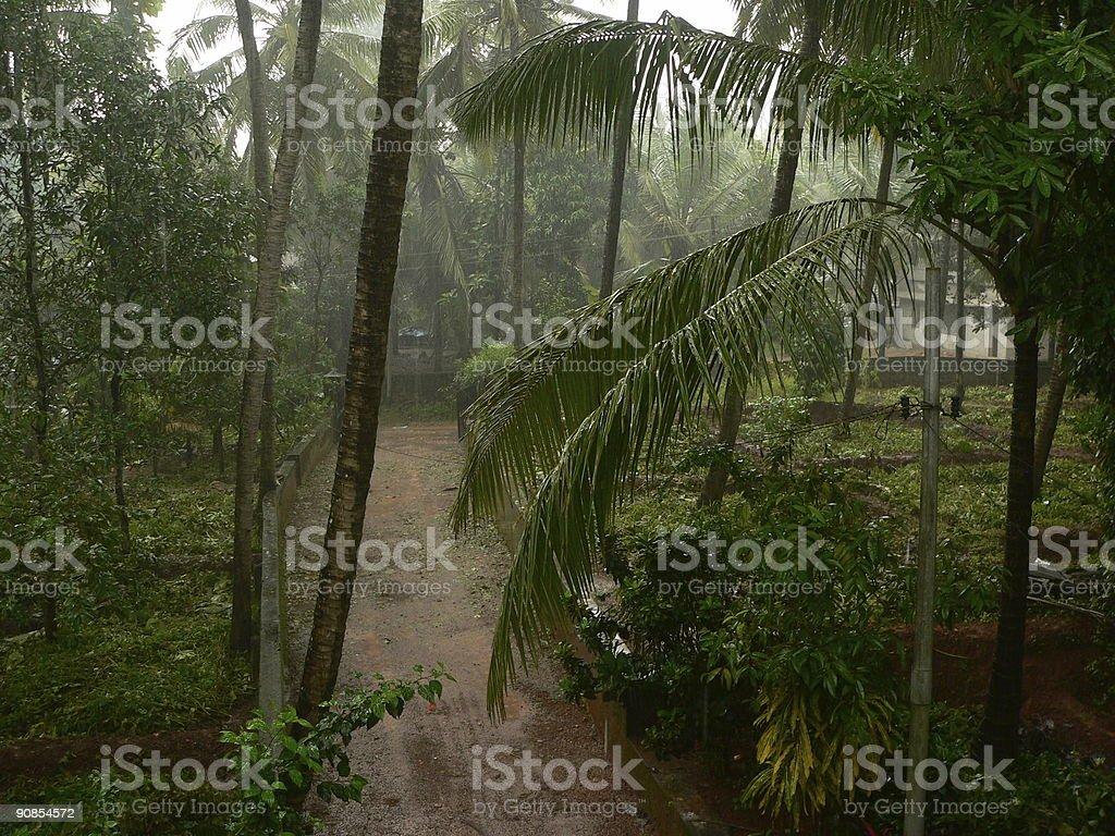Rains royalty-free stock photo