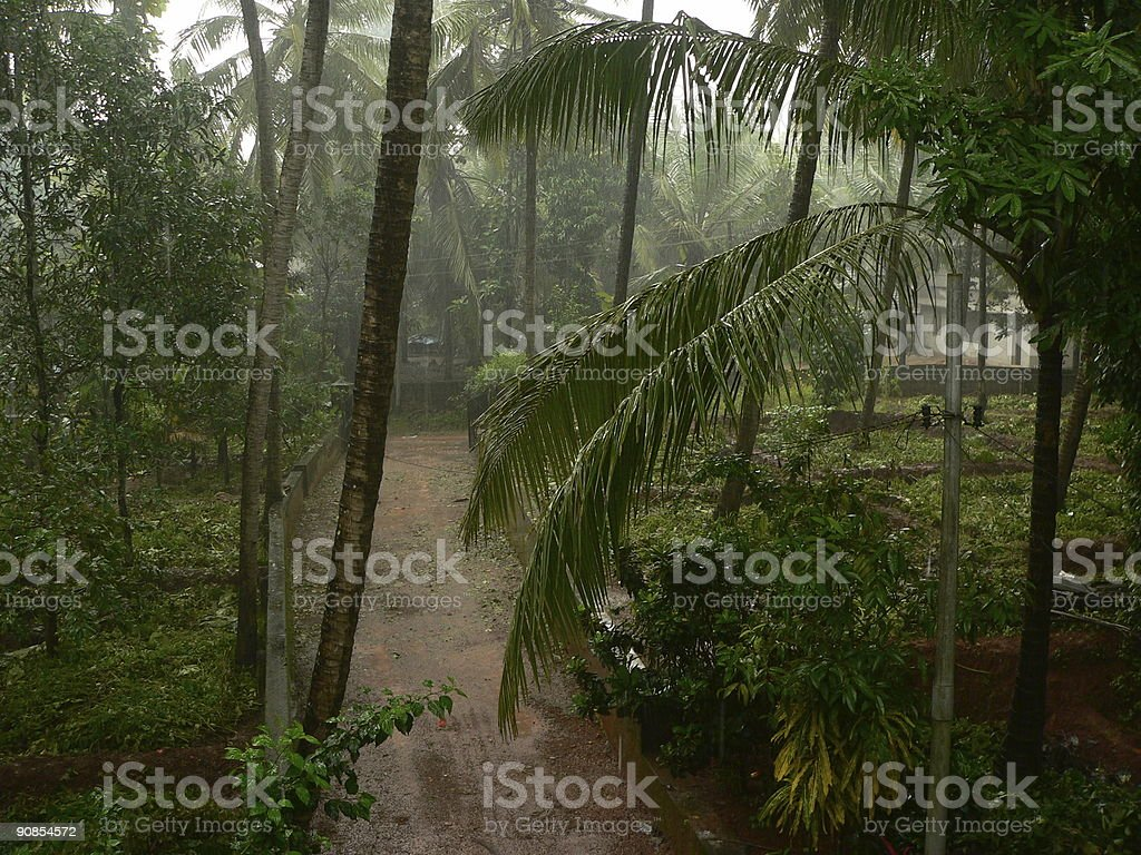 Rains stock photo