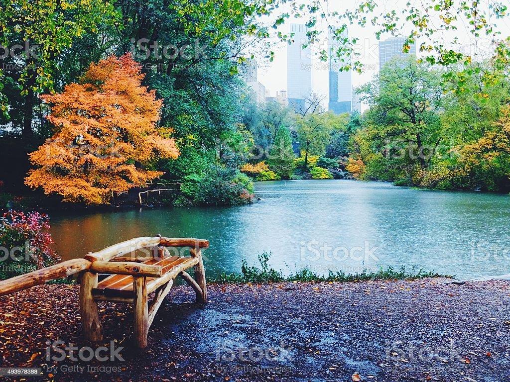 Rainy autumn day in Central Park stock photo