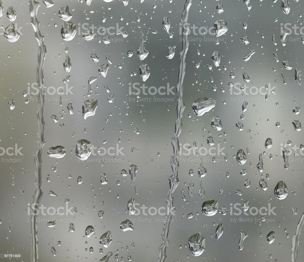 rainy closeup royalty-free stock photo