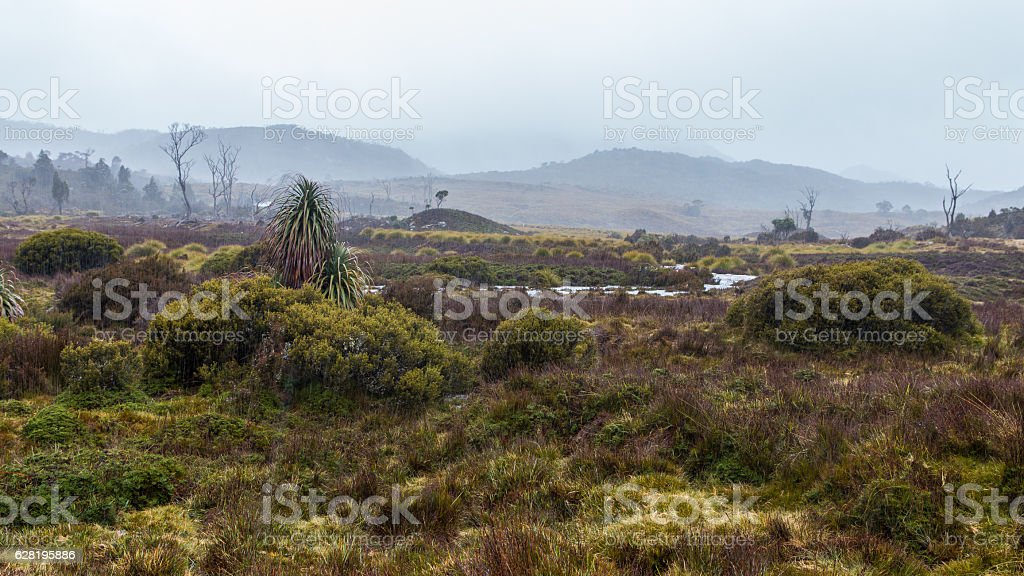 Rainy day at Cradle valley, Overland Hiking Track starting point stock photo