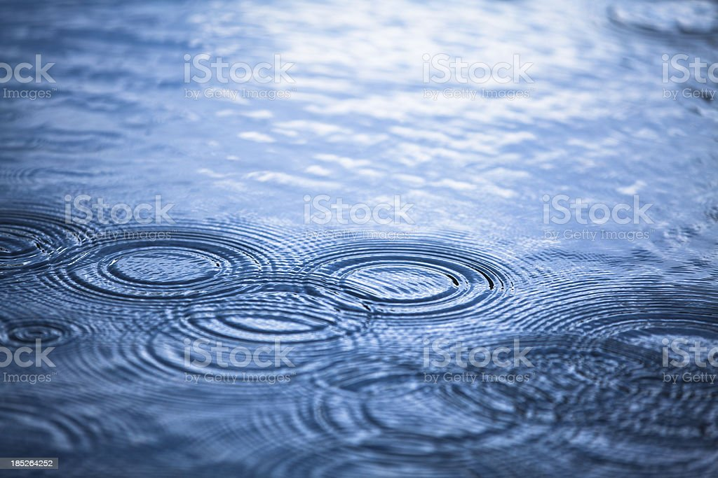 Rainy day droplets in a puddle stock photo