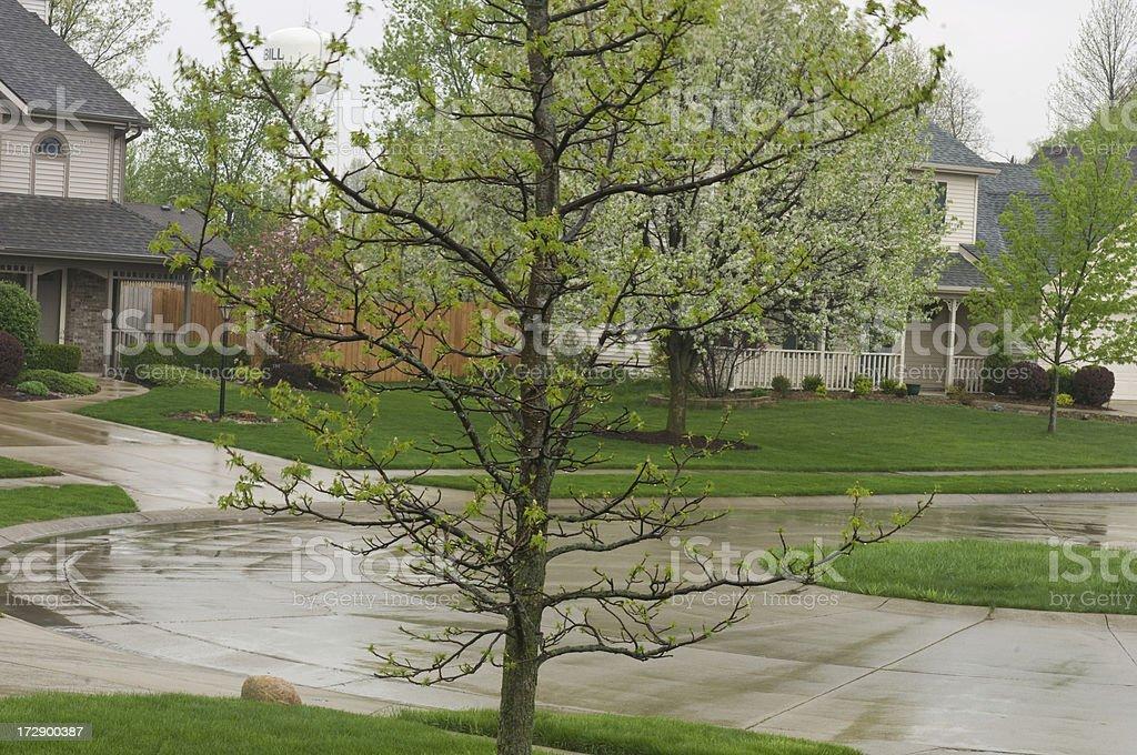 Rainy Day In The Suburbs royalty-free stock photo