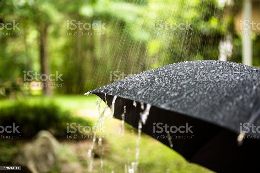 Rainy day. Raindrops falling on black umbrella outdoors. Spring, summer. stock photo