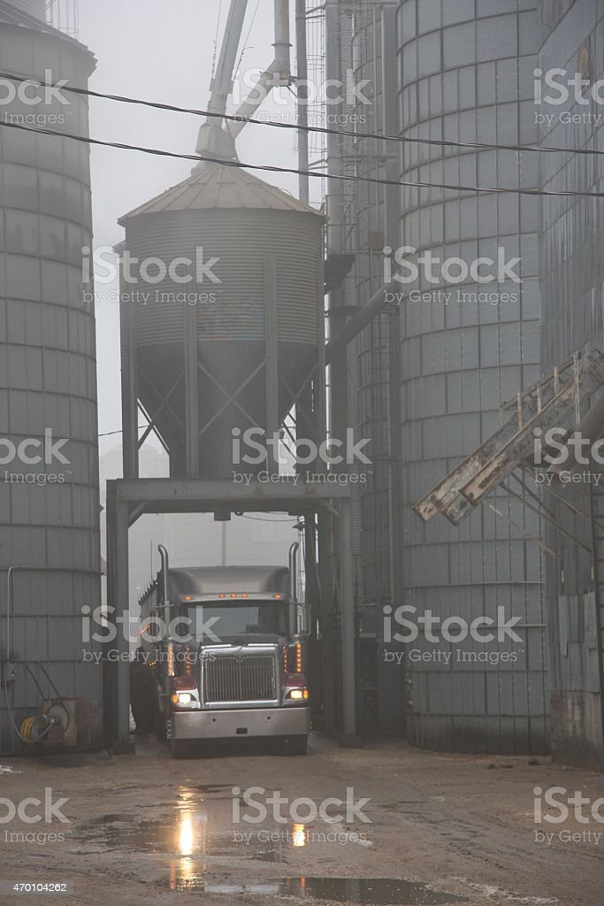 Rainy Morning at a Nebraska Grain Elevator stock photo