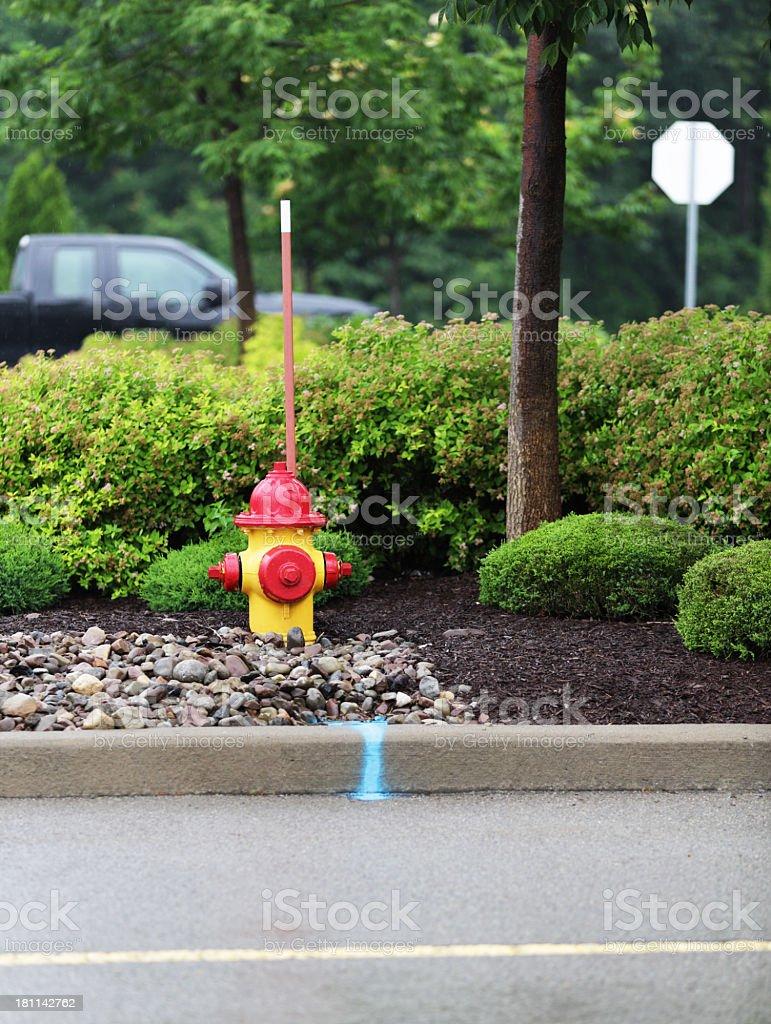 Rainy Parking Lot Fire Hydrant royalty-free stock photo