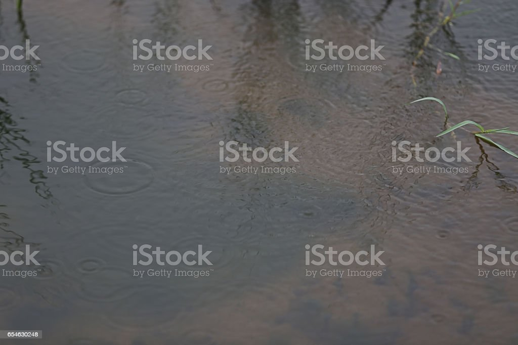 Rainy Water stock photo