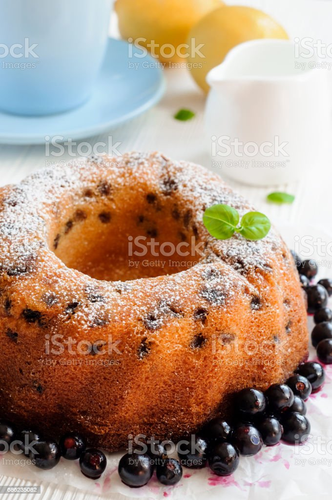 Raisin cake and currants stock photo