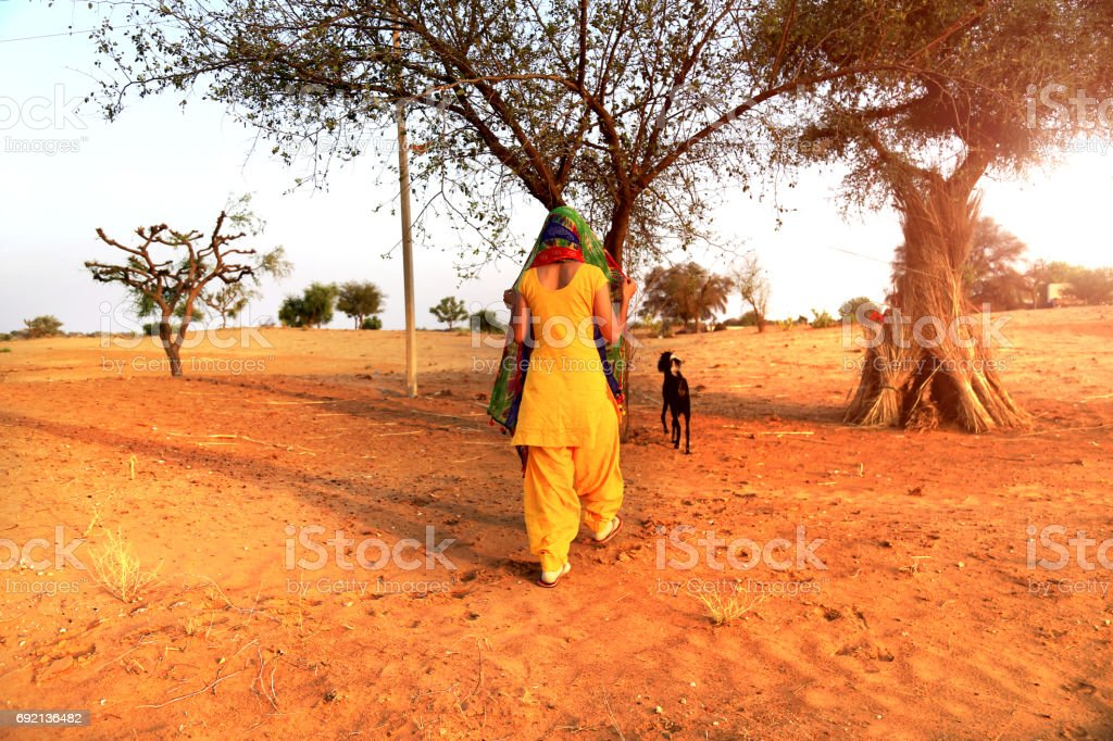 Rajasthani village women in desert stock photo