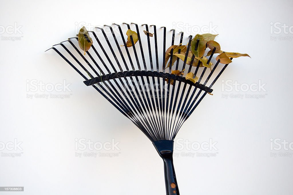 Rake and Leaves royalty-free stock photo