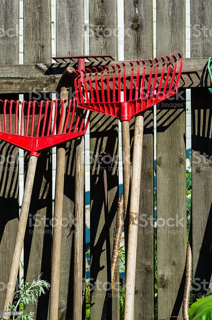 Rakes stock photo