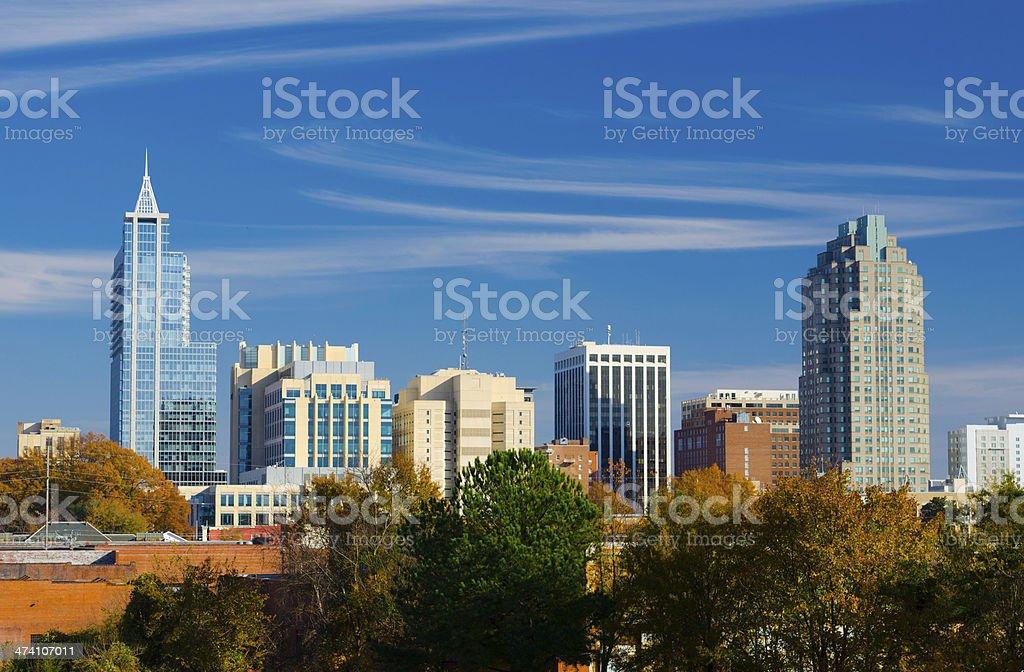 Raleigh skyline closeup stock photo