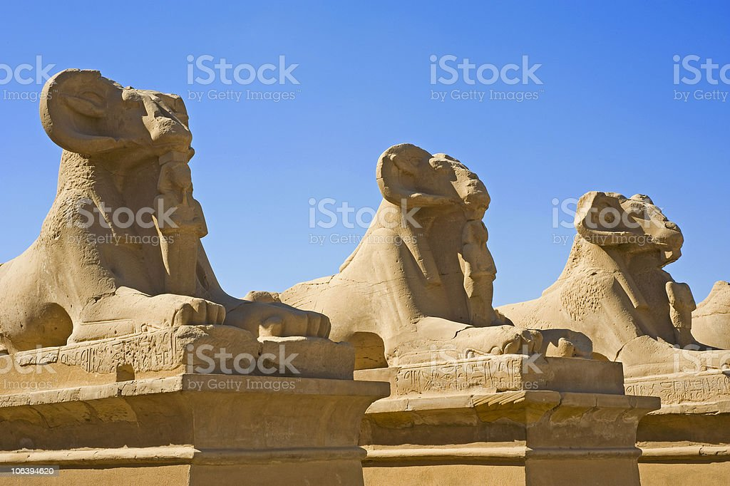 Ram sphinxes at Karnak Temple stock photo
