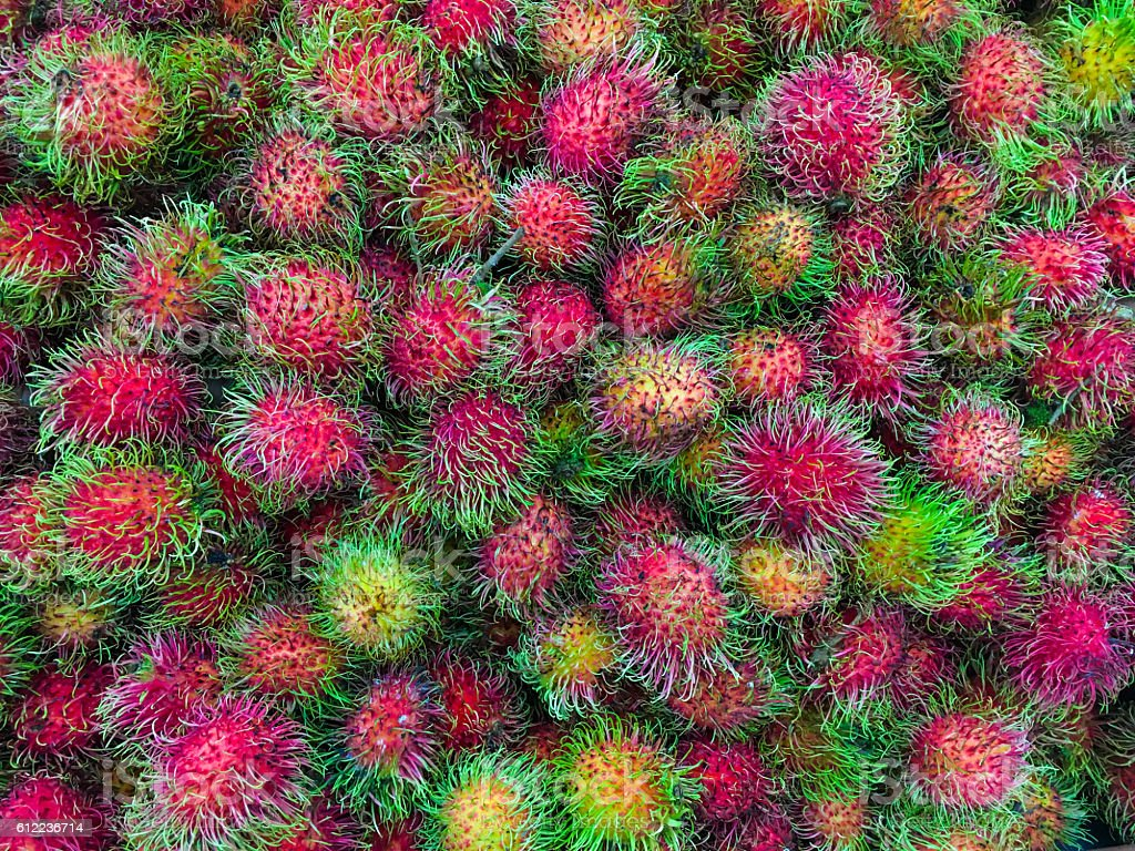 rambutan fruit stock photo