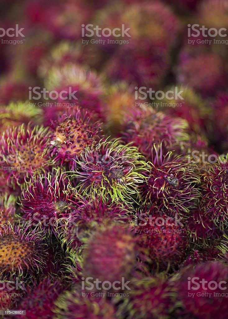 Rambutan fruits for sale stock photo