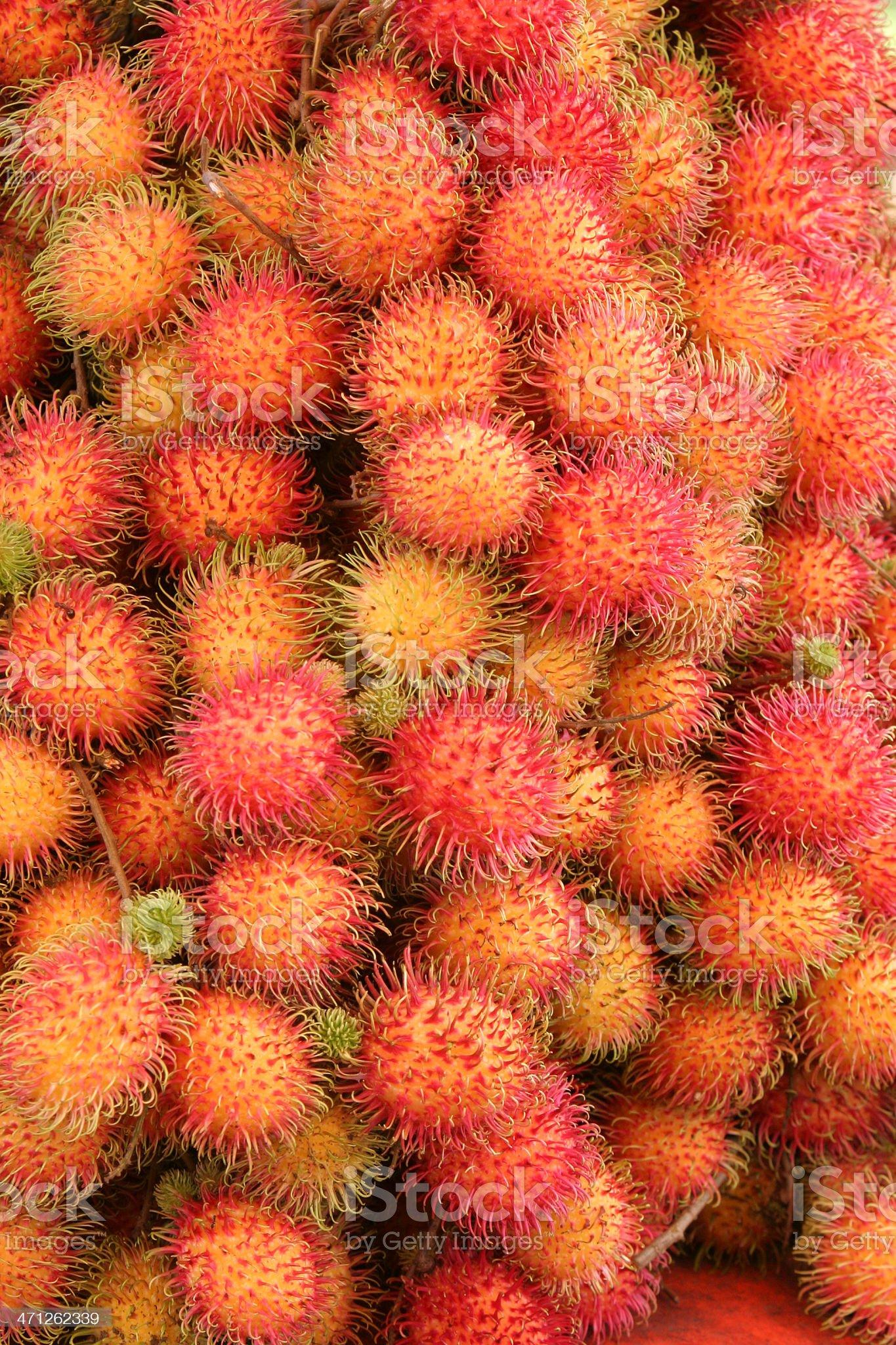 Rambutan, hairy fruit royalty-free stock photo