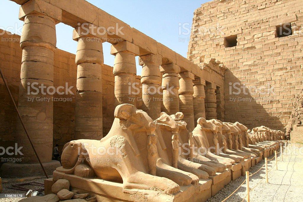 Ram-headed sphinxes. The ram of Amon stock photo