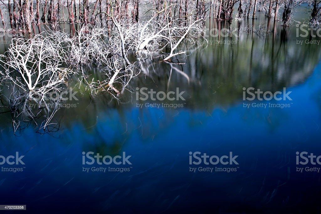 Ramni sul lago di Loppio stock photo