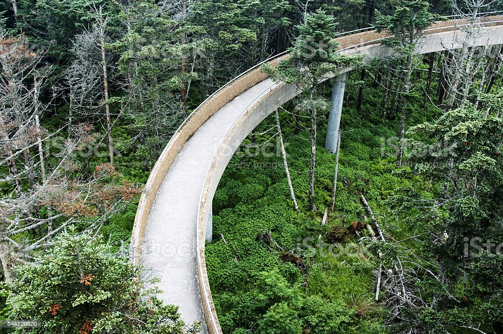 Ramp on Clingmans Dome, Smoky Mountains, Tennessee stock photo