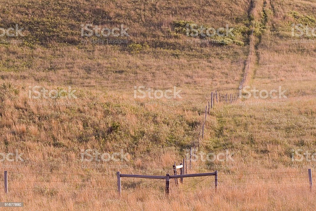 Ranch Fence stock photo