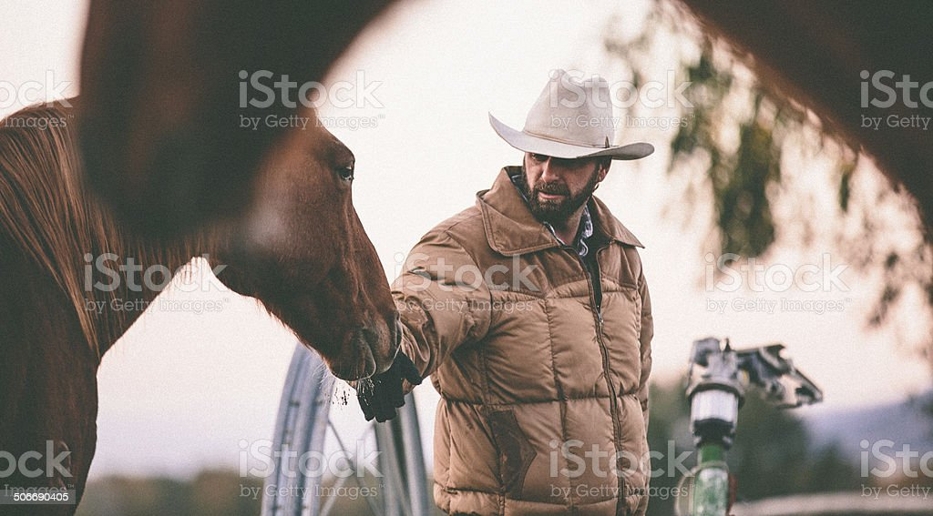 Rancher pets horse on nose while working in field royalty-free stock photo