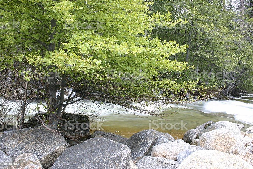 Rancheria Creek stock photo