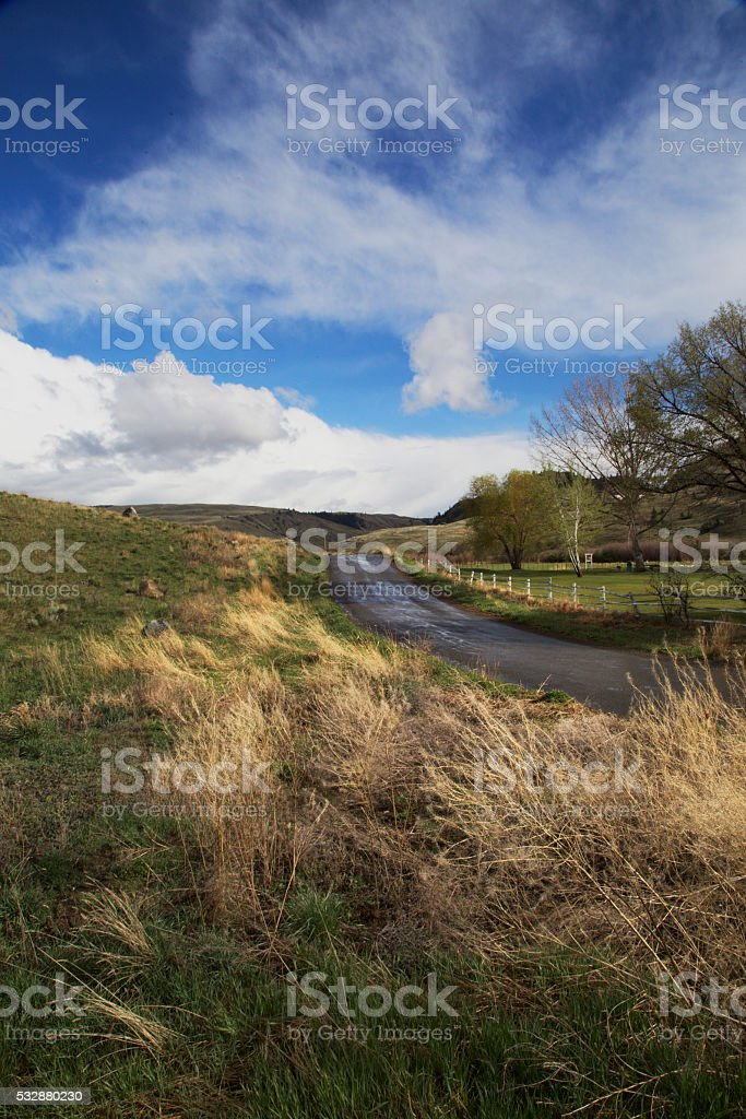 Ranchland vertical stock photo