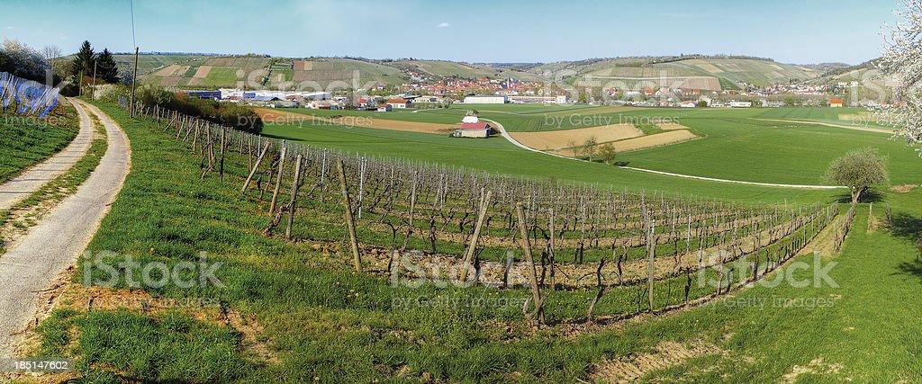 Randersacker and the Vineyard royalty-free stock photo