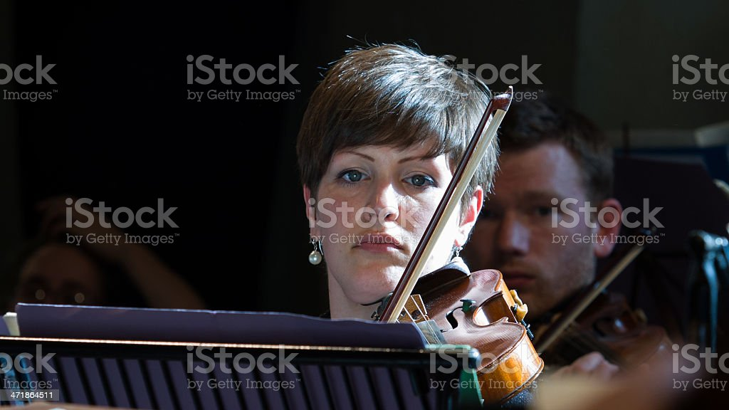 Rank and file violinist rehearsing in orchestra royalty-free stock photo