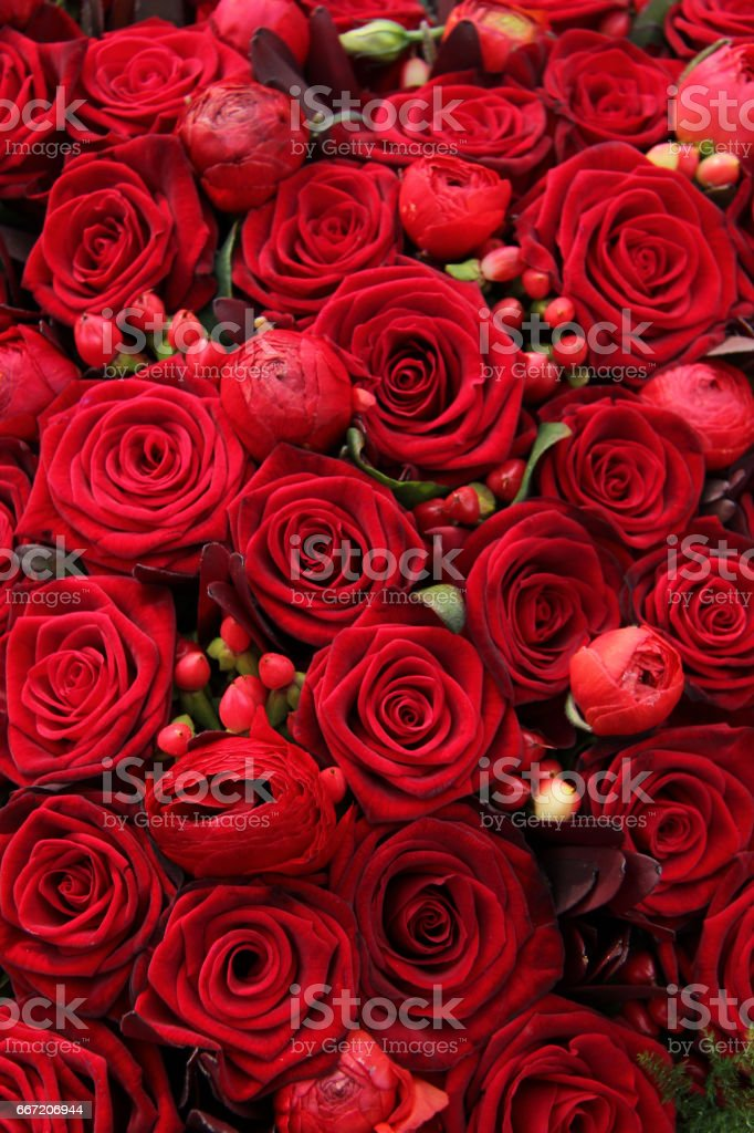 ranunculus, berries and roses in a group stock photo