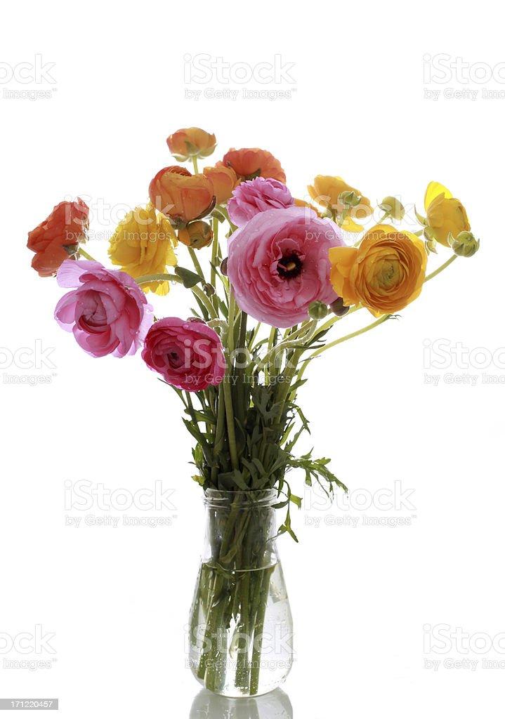 Ranunculus flower bouquet royalty-free stock photo