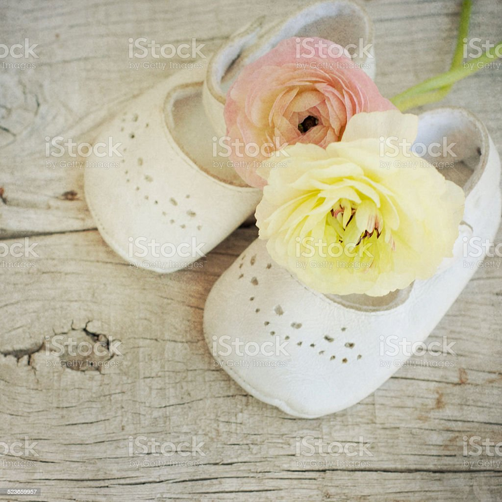 Ranunculus flowers Bouquet stock photo