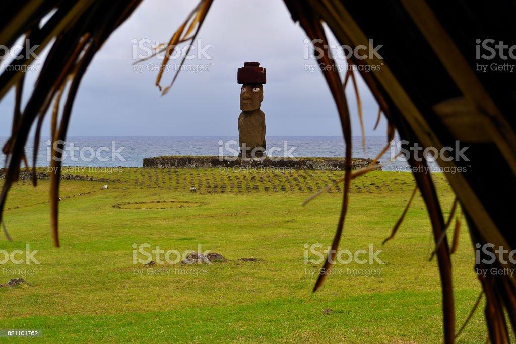 rapanui stock photo