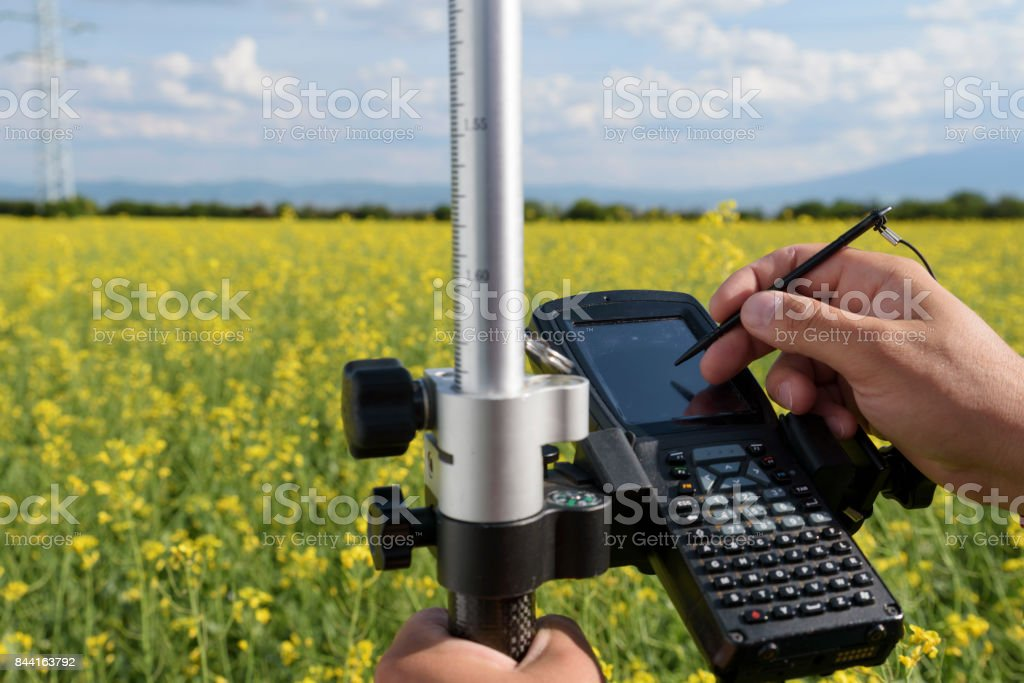 Rapeseed Controller Hands Hold stock photo