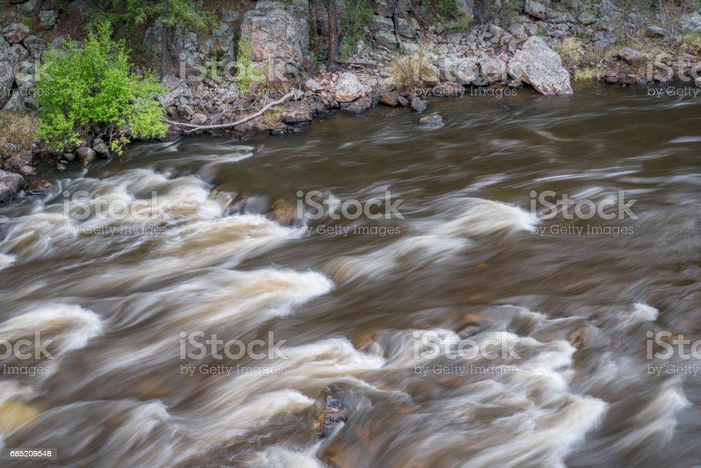 rapid on the Cache la Poudre River stock photo