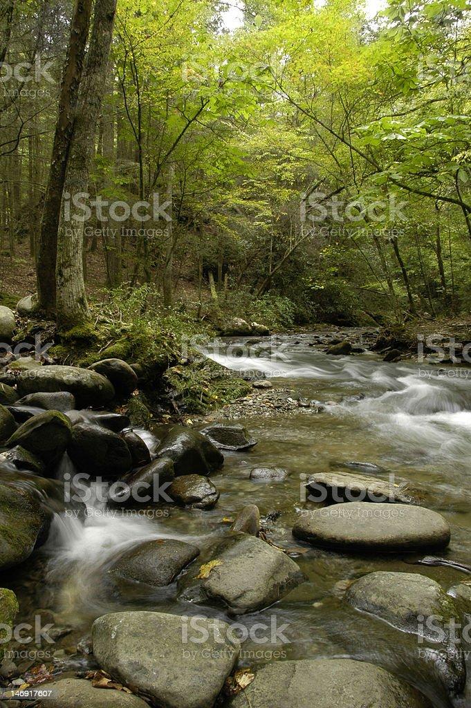 Rapids on Laurel creek royalty-free stock photo