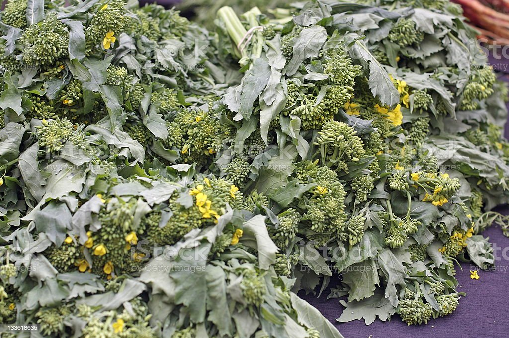 Rapini (broccoli rabe) stock photo