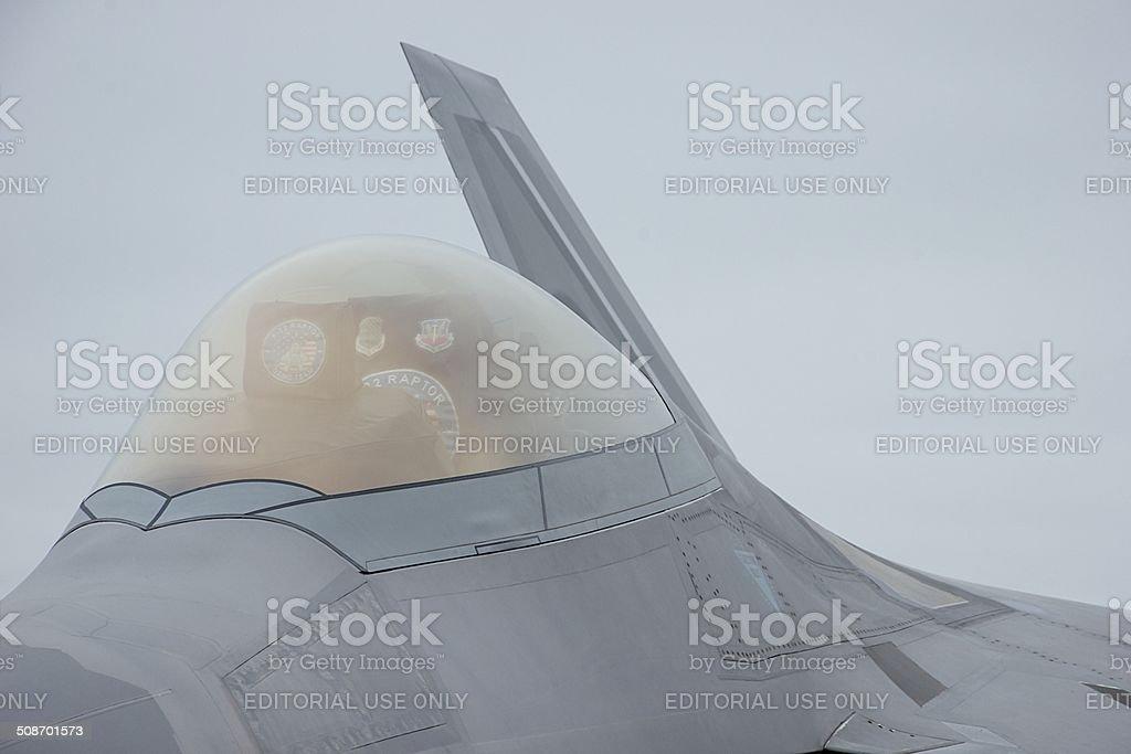 Raptor Canopy stock photo