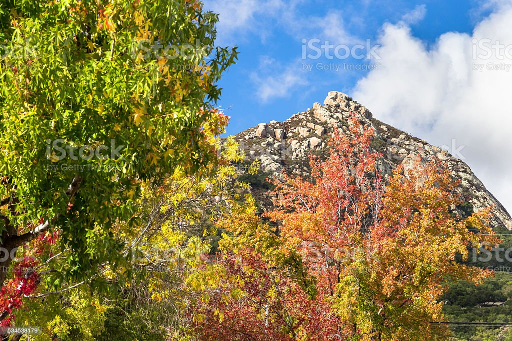Rare Fall Colors in San Luis Obispo stock photo