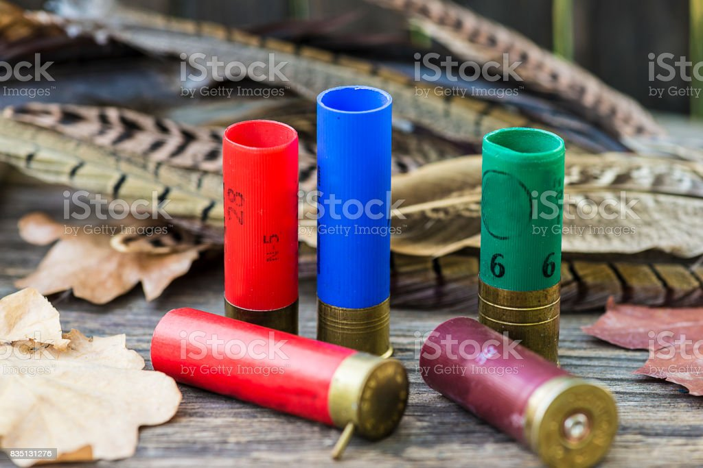 rare hunting sockets stock photo