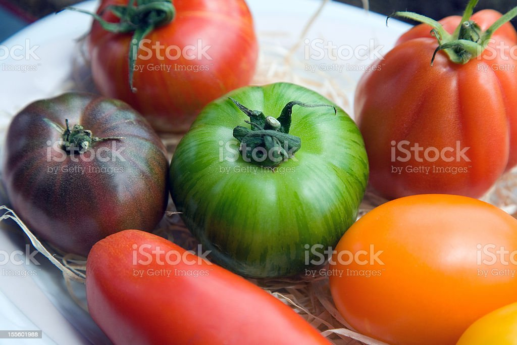 Rare old varieties of tomatoes royalty-free stock photo