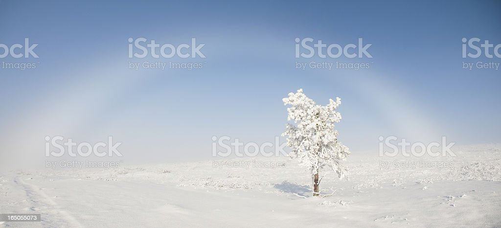 Rare Snowbow in Urho Kekkonen National Park, Lapland, Finland stock photo
