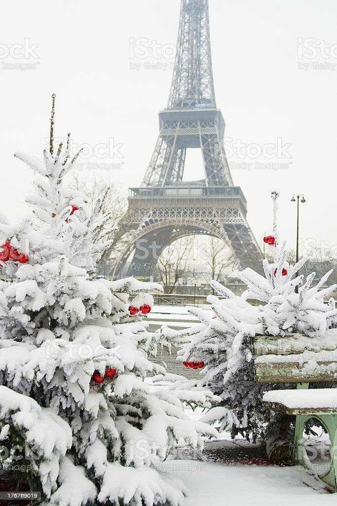 Rare snowy day in Paris royalty-free stock photo